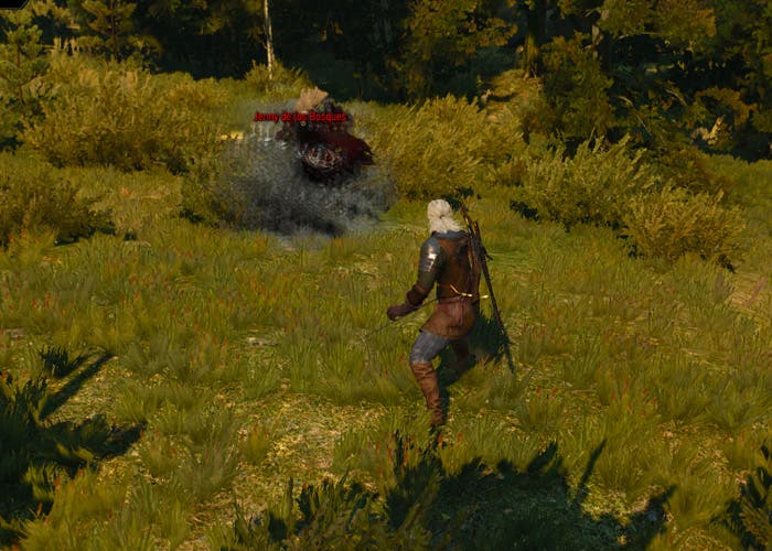 The Witcher 3 Jenny de los Bosques