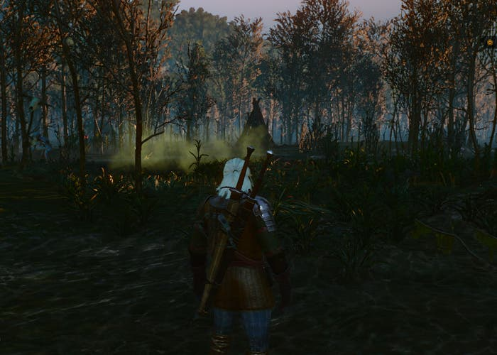 The Witcher 3 Ciénaga
