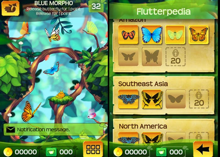 flutterr